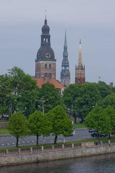 Count the trees in Riga!     Riga Riga Riga  Latvia  www.riga.com