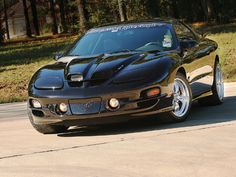1998 Pontiac Trans Am Front Modern Muscle Cars, American Muscle Cars, Trans Am Ws6, Pontiac Firebird Trans Am, Pontiac Banshee, Pontiac Cars, Gm Car, 6 Photos, Hot Rides