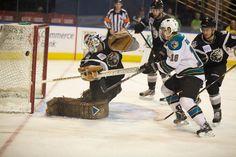 Worcester Sharks rookie Yanni Gourde misses wide on Manchester Monarchs goaltender Peter Mannino (Dec. 28, 2012).