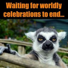 Waiting for worldly celebrations to end.