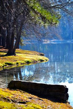 Lake Clair, Fayetteville NC... HOT JOB available here for #travel #nurses! Visit www.trinityhsg.com for more info!