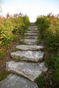 You don't need expensive stone slabs to form attractive outdoor steps. Landscaping Tools, Stone Landscaping, Landscaping With Rocks, Backyard Landscaping, Backyard Ideas, Steep Backyard, Backyard Decorations, Tropical Landscaping, Modern Landscaping