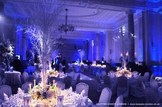 Flowers, Reception, White, Blue, Silver, Lighting