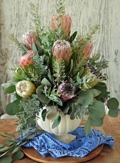 Protea, acacia and eucalyptus