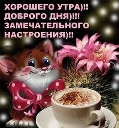 доброе утро картинки красивые: 20 тыс изображений найдено в Яндекс.Картинках