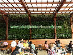 Fachada vegetal sistema Ignacio Solano Quito http://www.paisajismourbano.com/wp-content/uploads/2013/02/urbanismo-ecologico-ignacio-solano-muro-verde.jpg