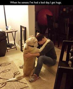 <3 hugs <3
