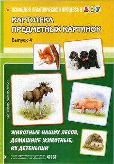 Картотека предметных картинок: «Домашние и дикие животные»