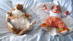 cat and baby 16