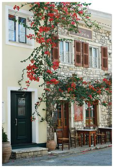"""Traditional cafe (""""Η Κίρκη"""") in Paxoi"""