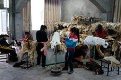 Cia Guo Qiang - productie van de dieren voor 'the ninth wave', een vissersboot.