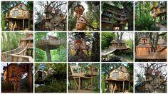 15 maisons exceptionnelles dans les arbres pour contempler la nature | Construire Tendance