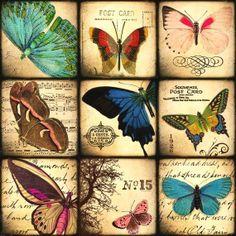 mariposas vintage