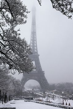 Paris, France in the winter. There's nothing more sensational about this photo.