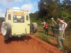 Riusciranno i nostri eroi... ad aggiustare la ruota della jeep e riprendere il safari??