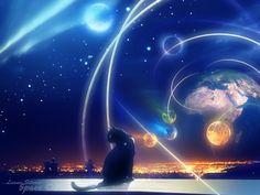 Space Cat Sci Fi Art Wallpaper