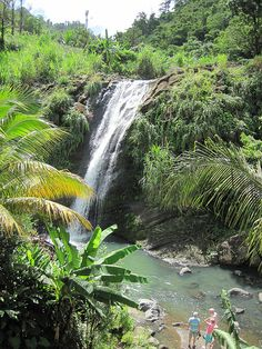 Grenada Concord Waterfall