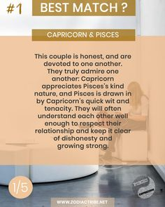 Find your Zodiac Signs Compatibility for all zodiac signs, for couples, relationships and love matches and find your Couple shirts to match. Capricorn And Pisces Compatibility, Aries And Aquarius, Capricorn Love, Capricorn Facts, Pisces Quotes, Signs Compatibility, Aquarius Relationship, Capricorn Relationships, Couple Relationship