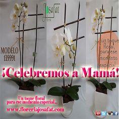 #CelebremosaMamá! floreriajosafat.com ☛http://bit.ly/1gMUbPP #CDMX Pedidos al 5512 9981