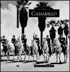 Camarillo White Arabian Horse 1941, bred by Adolfo Camarillo. These white horses were used in the 1960 movie Ben Hur chariot race.