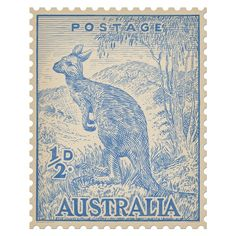 Kangaroo in Berry - Quercus & Co. Iconic Australian postage stamp re-drawn in crayon and printed onto self-adhesive, repositional fabric. Australian Painting, Blue Artwork, Postage Stamp Art, Australian Animals, Vintage Stamps, Mail Art, Wall Sticker, Wall Decals, Japanese Art