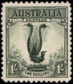 Australian Postage Stamp - Lyrebird
