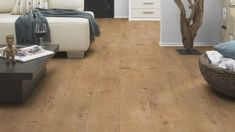 Dynamic V+ - Termékek - Diego Gray Wood Laminate Flooring, Grey Hardwood Floors, Types Of Wood Flooring, Installing Laminate Flooring, Flooring Options, Wooden Flooring, Flooring Ideas, Engineered Hardwood, White Flooring