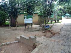 Etats des lieux 5 février 2013 du Parc Botanique et Zoologique de Tsimbazaza