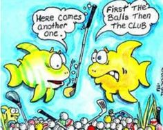 Howard's Golf provides golfers of all ages and abilities an all-in-one shoppig experience. We improve your game with custom fit golf clubs and more. Golf Humor, Funny Golf, Golf Quotes, Funny Quotes, Golf Stance, Best Golf Clubs, Golfer, Golf Club Sets, Golf Party