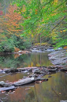 Deep Creek in the Great Smoky Mountains of Bryson City and Swain County, NC