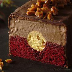 Indigenous Australian dessert flag: Chocolate wattleseed vanilla macadamia and rosella red velvet ice cream cake [1080x1080] [OC]