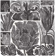 Wood Engravings - KEVIS HOUSE GALLERY Susan Reynolds, Sybil Andrews, Ian Taylor, John Amos, Jim White, Harry Brown, Ford, Wood Engraving, Contemporary Art