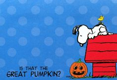 Is that the Great Pumpkin?