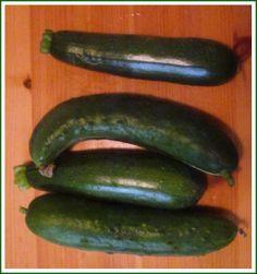 Raccolta verdura Progressi: maturazione delle zucchine. Crescita importante pomodori, peperoni, piselli, insalata riccia e fragole . Raccolto: Zucchine, erba cipollina, rosmarino, cetrioli e prezzemolo. In tavola: Cetrioli, erba cipollina. Preparazione di pappa per la mia piccolina con le zucchine. Uso di prezzemolo e rosmarino per vari piatti preparati durante la settimana.