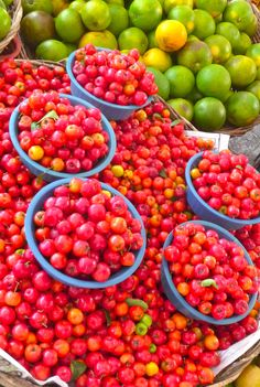 "Aracaju, Brazil market trip. Bowls of ""Pitanga cherries"". Photo by Dan Trepanier"