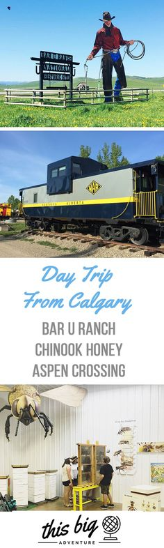 Take a Day Trip from Calgary and visit Bar U Ranch, Chinook Honey and Aspen Crossing