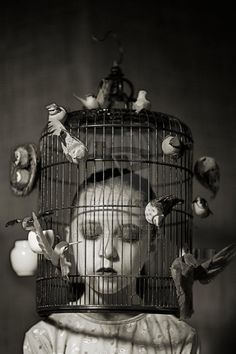 Image result for sad bird in cage