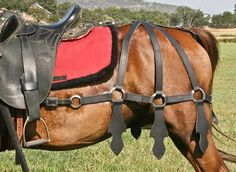 horse barding armor - Bing Images