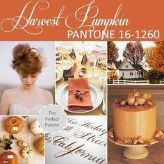 http://www.theperfectpalette.com/2012/10/pantone-palette-harvest-pumpkin-16-1260.html