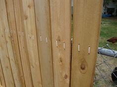 Creative Healings: Zip Tie Cedar Fence and Walk In Chicken Enclosure Diy Privacy Fence, Backyard Privacy, Diy Fence, Backyard Fences, Backyard Projects, Fenced In Yard, Chickens Backyard, Fence Ideas, Privacy Screens