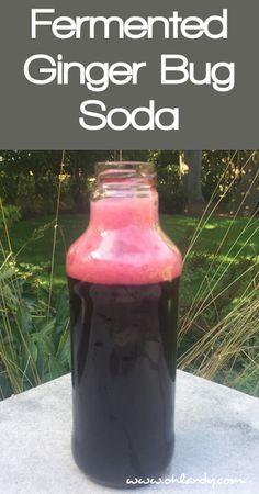Fermented Ginger Bug Soda Recipe - www.ohlardy.com: