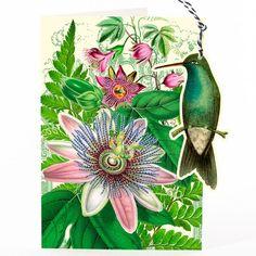 HUMMING BIRD & PASSION FLOWER - FANDANGLE GREETING CARD