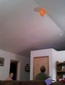 Share this Baby Balloon Grab Animated GIF with everyone. Gif4Share is best source of Funny GIFs, Cats GIFs, Reactions GIFs to Share on social networks and chat.