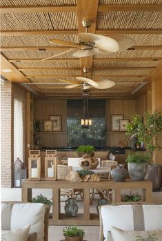 Windpointe ceiling fans in Antique Brass with tropical palm blades