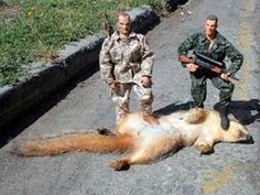 Now that takes imagination, two GI Joe figures, and one dead squirrel
