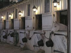 The lights above the stall. Good idea outside of the barn so the horse can see outside and then I would put gaits around each stall so I could let the horse out but into its own little grassed area. Horse Stalls, Horse Barns, Old Barns, Barn Stalls, Dream Stables, Dream Barn, Campolina, Equestrian Stables, Horse Property