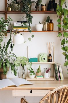 Shipping Furniture From Usa To Australia Product Home Office Design, Home Office Decor, Room Ideas Bedroom, Bedroom Decor, Room With Plants, Deco Boheme, Boho Room, Aesthetic Room Decor, My New Room