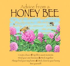 advice from a BEE