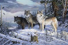 Terry Doughty Solid-Faced Canvas Print Wall Art Print entitled Sentinels of the Forest Wolf Images, Wolf Pictures, Wolf Photos, Wildlife Paintings, Wildlife Art, Horse Paintings, Pastel Paintings, Canvas Wall Art, Wall Art Prints