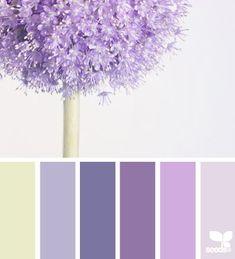 Design Seeds® | for all who ❤ color | allium hues design-seeds.com